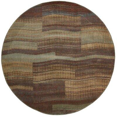 Smithtown Aqua/Brown Area Rug Rug Size: Round 56