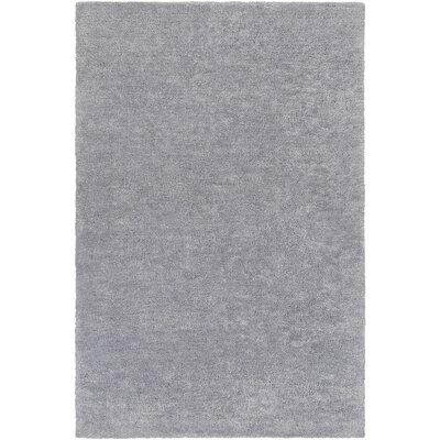 Infant Light Gray Area Rug Rug size: Rectangle 4 x 6