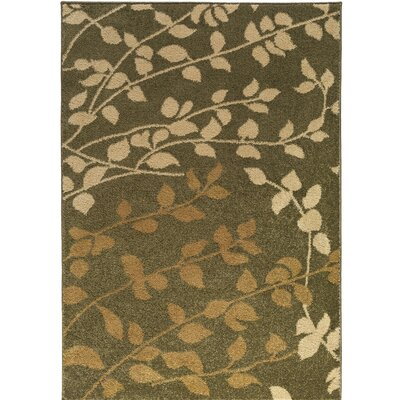 Demetria Floral and Plants Multi Area Rug Rug Size: Rectangle 22 x 3