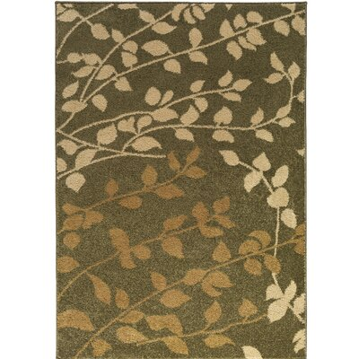 Demetria Floral and Plants Multi Area Rug Rug Size: 76 x 106