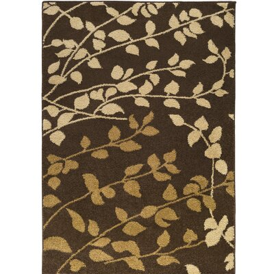 Demetria Carafe Brown/Dijon Area Rug Rug Size: Rectangle 76 x 106