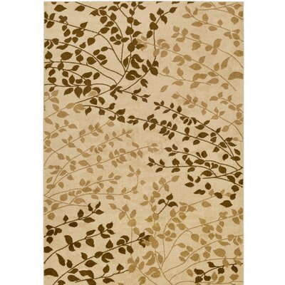 Demetria Classic Multi Area Rug Rug Size: Rectangle 76 x 106