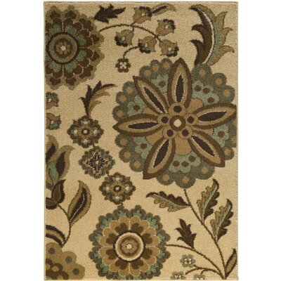 Demetria  Hand Woven Multi Area Rug Rug Size: Rectangle 52 x 76