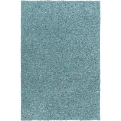 Teal Area Rug Rug size: 5 x 76