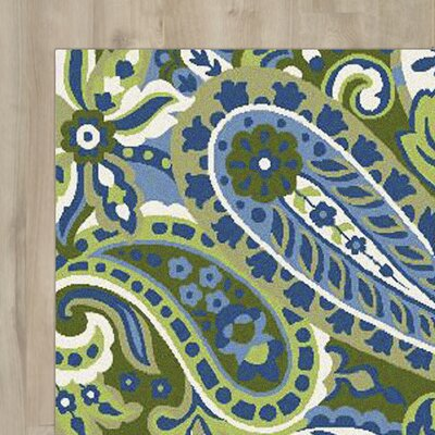 Cynthia Paisley Multi Outdoor Rug Rug Size: Rectangle 8 x 10
