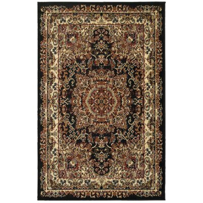 Harrison Black Area Rug Rug Size: Rectangle 36 x 56