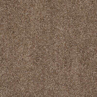 Curran Taupe Area Rug Rug Size: 8 x 10