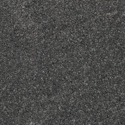 Curran Dark Gray Area Rug Rug Size: Round 67