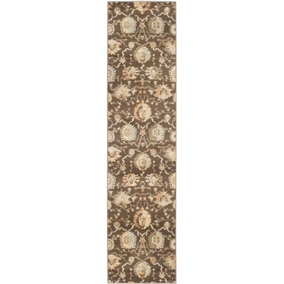 Albina Brown/Ivory Area Rug Rug Size: Runner 2 x 8