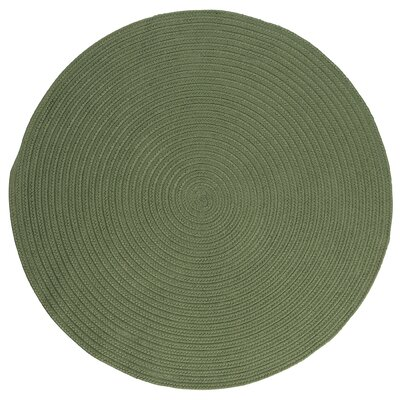 Mcintyre Moss Green Indoor/Outdoor Area Rug Rug Size: Round 4