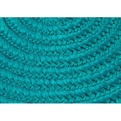 Rainsburg Turquoise Outdoor Area Rug