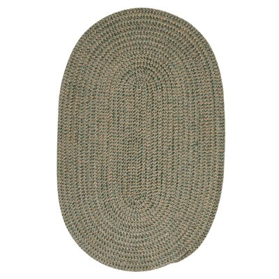 Hale Myrtle Green Check Indoor/Outdoor Area Rug Rug Size: Round 4