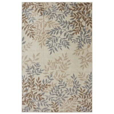 Cole Area Rug Rug Size: Rectangle 8 x 10