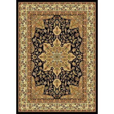 Blanche Black Area Rug Rug Size: Rectangle 37 x 52