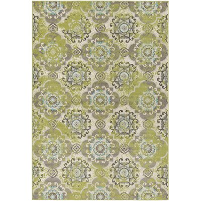 Sandwell Green Area Rug Rug Size: Rectangle 53 x 76