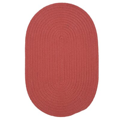 Mcintyre Terracotta Indoor/Outdoor Area Rug Rug Size: Oval 3 x 5