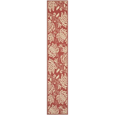 Short Red/Natural Indoor/Outdoor Area Rug Rug Size: Runner 24 x 67