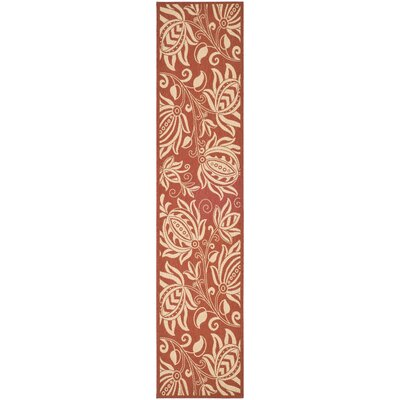 Short Red/Natural Indoor/Outdoor Area Rug Rug Size: Runner 24 x 911