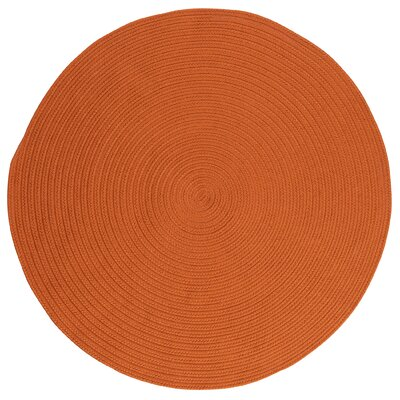 Mcintyre Rust Outdoor Area Rug Rug Size: Round 8