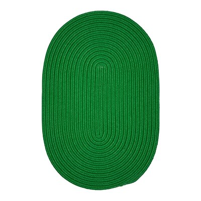 Mcintyre Green Outdoor Area Rug Rug Size: Round 10