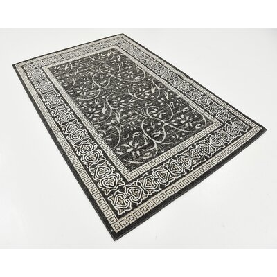 Austin Black Indoor/Outdoor Area Rug Rug Size: 4 x 6