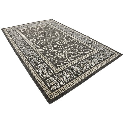 Austin Black Indoor/Outdoor Area Rug Rug Size: Rectangle 6 x 9