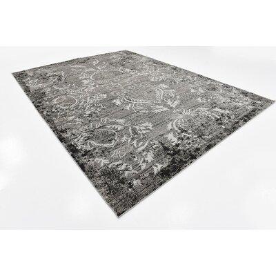 Light Gray Indoor/Outdoor Area Rug Rug Size: 9 x 12