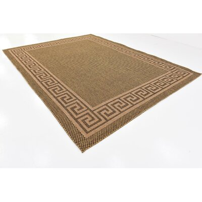 Lynnville Brown Outdoor Area Rug Rug Size: 9 x 12