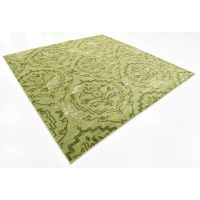 Goshen Light Green Area Rug Rug Size: Square 8