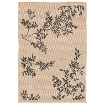 Aldreda Indoor/Outdoor Area Rug Rug Size: 111 x 211
