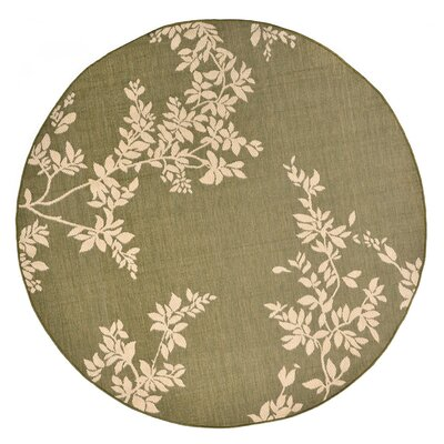 Aldreda Green Indoor/Outdoor Area Rug