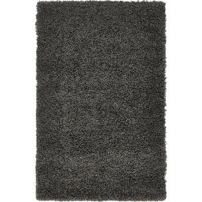 Lilah Dark Gray Area Rug Rug Size: 33 x 53