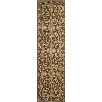 Albertine Brown Area Rug Rug Size: Runner 23 x 8