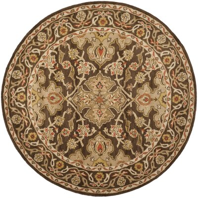 Albertine Brown Area Rug Rug Size: Round 6