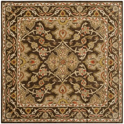 Albertine Brown Area Rug Rug Size: Square 6