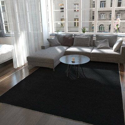 Lilah Black Area Rug Rug Size: Rectangle 9 x 12