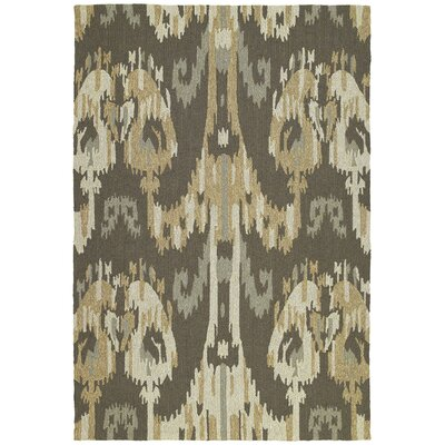 Cavour Graphite Floral Indoor/Outdoor Area Rug Rug Size: 10 x 14