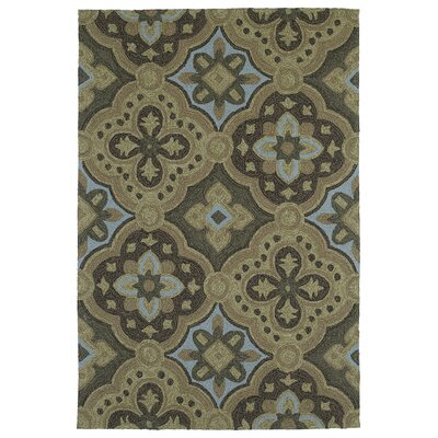 Cavour Mocha Floral Indoor/Outdoor Area Rug Rug Size: Rectangle 9 x 12
