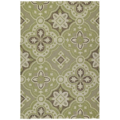 Cavour Wasabi Floral Indoor/Outdoor Area Rug Rug Size: Rectangle 10 x 14