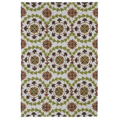 Didama Brown Indoor/Outdoor Area Rug Rug Size: Round 59