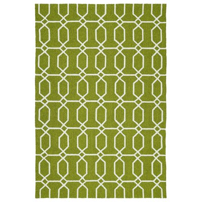 Stepanie Green/White Indoor/Outdoor Area Rug Rug Size: 4 x 6