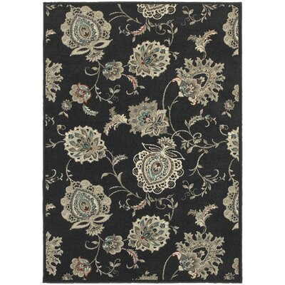 Alexander Midnight/Ivory Area Rug Rug Size: Rectangle 53 x 76
