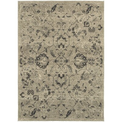 Alexander Beige/Grey Area Rug Rug Size: Rectangle 53 x 76