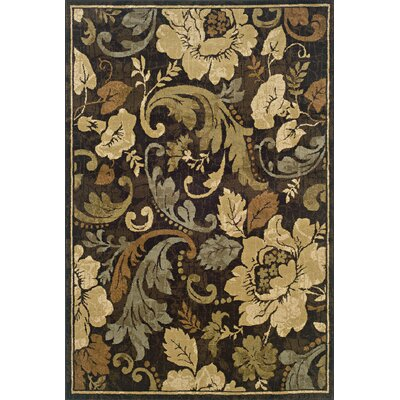 Bilbrey Brown/Beige Area Rug Rug Size: Runner 110 x 76