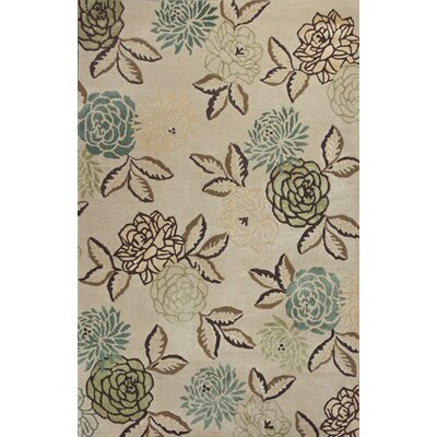 Castillo Elegance Area Rug Rug Size: Rectangle 26 x 42