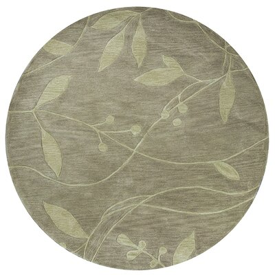 Bradshaw Celadon Visions Area Rug Rug Size: Rectangle 8' x 10'