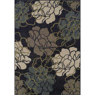 Massey Black Area Rug Rug Size: Rectangle 33 x 51