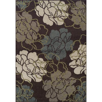 Massey Chocolate Area Rug Rug Size: 33 x 51