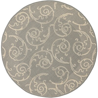 Short Grey / Natural Indoor/Outdoor Rug Rug Size: Round 67