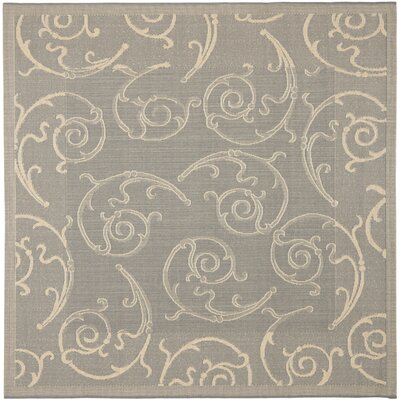 Alberty Grey / Natural Indoor/Outdoor Rug Rug Size: Square 67